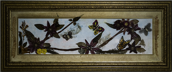 Sherry Smith, Botanical Butterfly & Moth Heaven